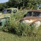 lost-cars